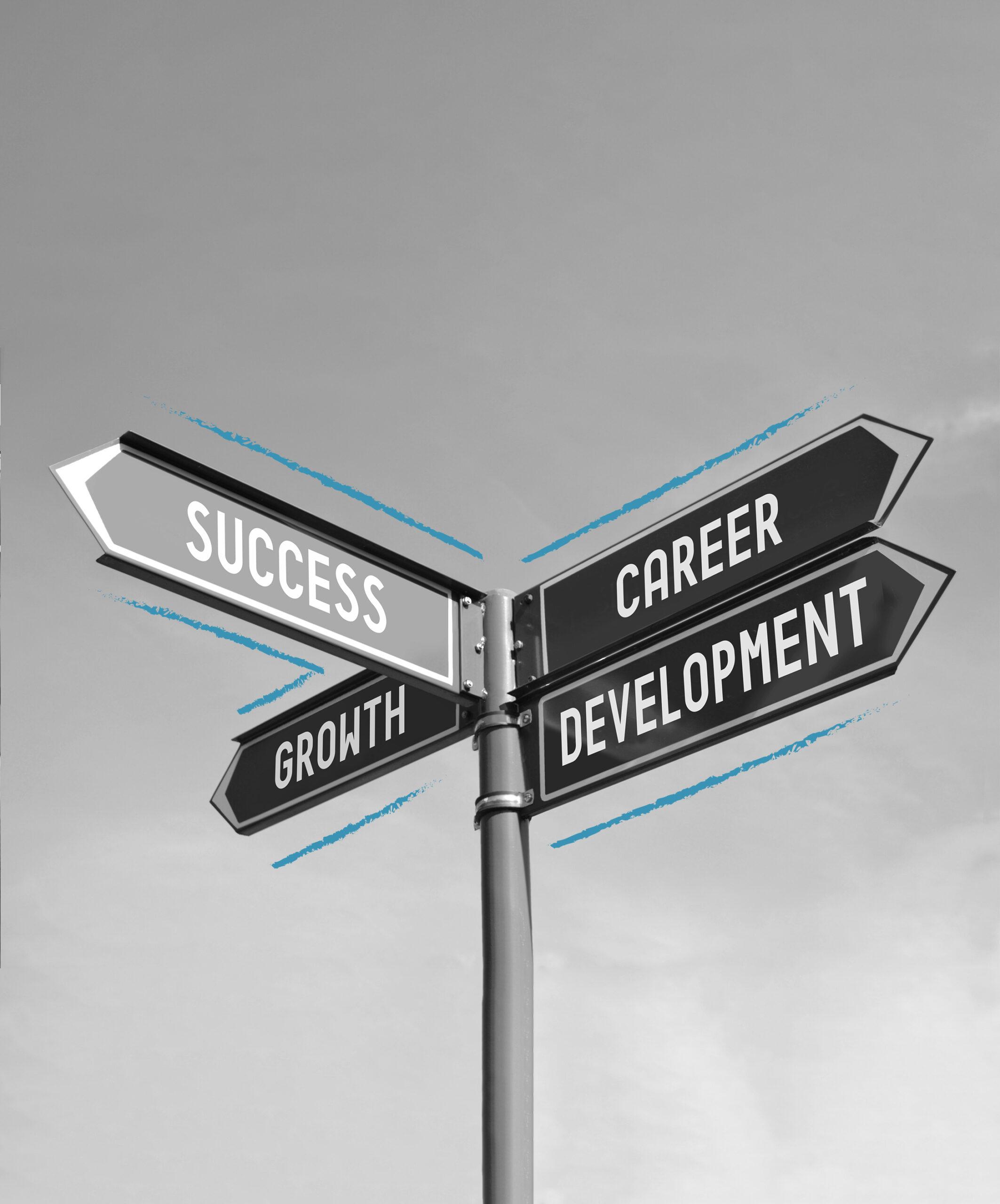 HR Data Drivers   Onze Oplossingen   Employability